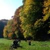 Herbstlager 2008